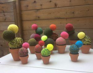 Cactus Sonia